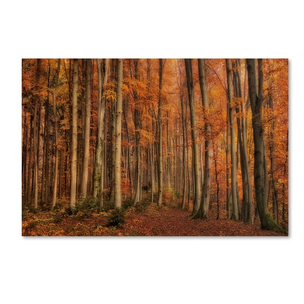 Norbert Maier 'Winters Soon To Come' Canvas Art