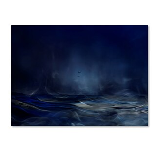 Willy Marthinussen 'Fly Away' Canvas Art