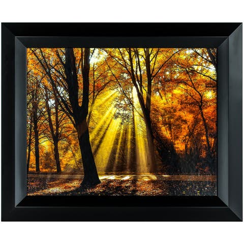 American Art Decor Dressed to Shine Framed Photographic Print Wall Art Decor