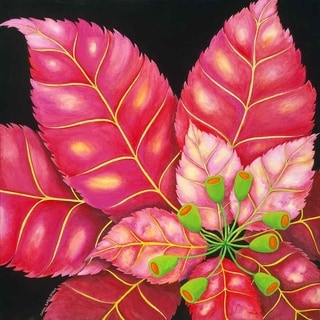 """Poinsettia"" by Carol Sabo, Canvas Giclee Wall Art"