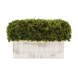 Faux Boxwood Pot - Green