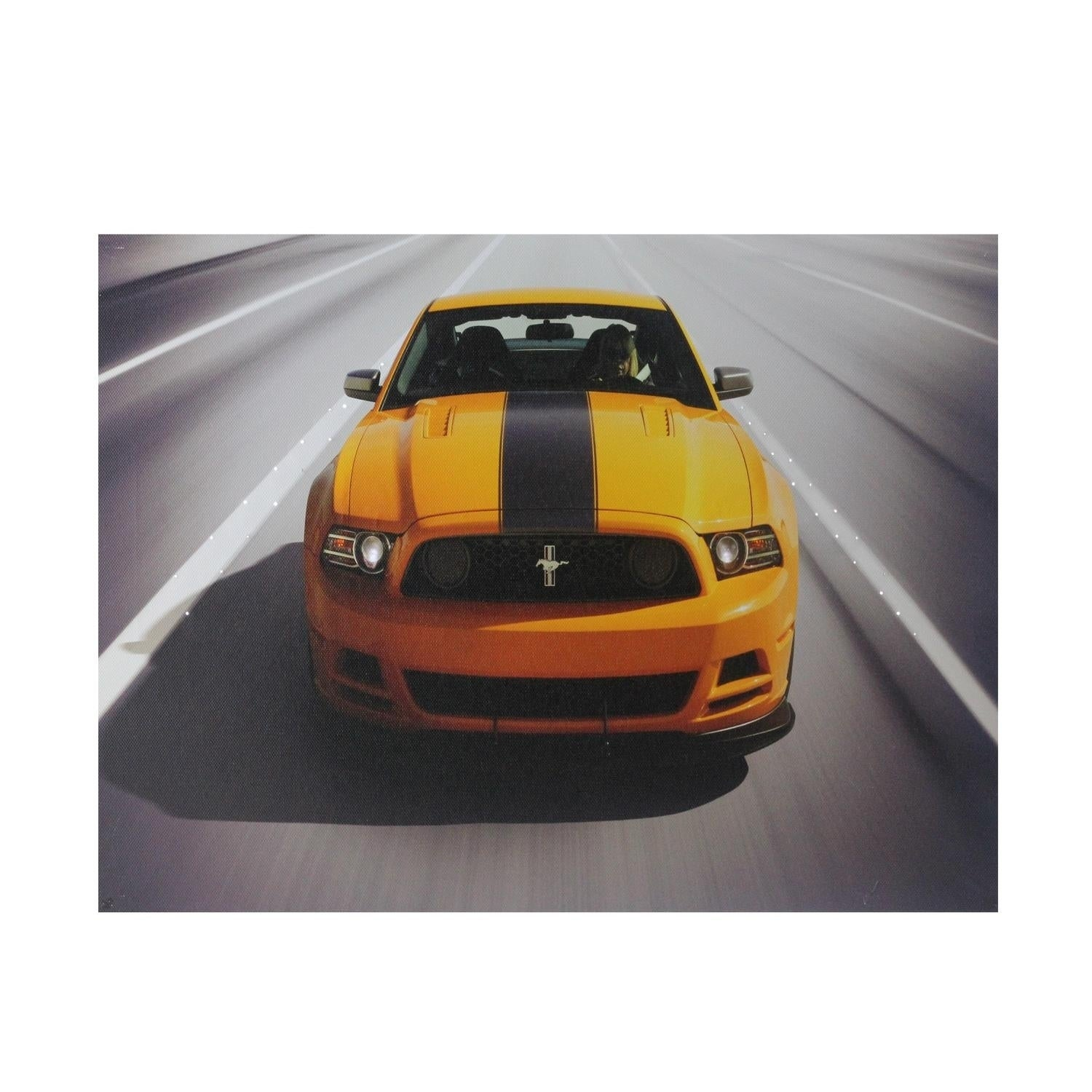 Fiber Optic and LED Lighted 2013 Ford Mustang Boss 302 Ca...