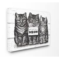 You Had Me at Meow Cats Stretched Canvas Wall Art