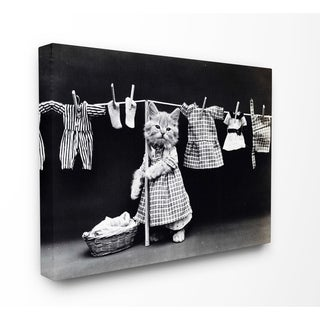 Kitten Does The Laundry Stretched Canvas Wall Art
