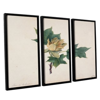 French School 'Flower of a Tulip Tree' 3-piece Floater-framed Canvas Wall Art Set - Multi
