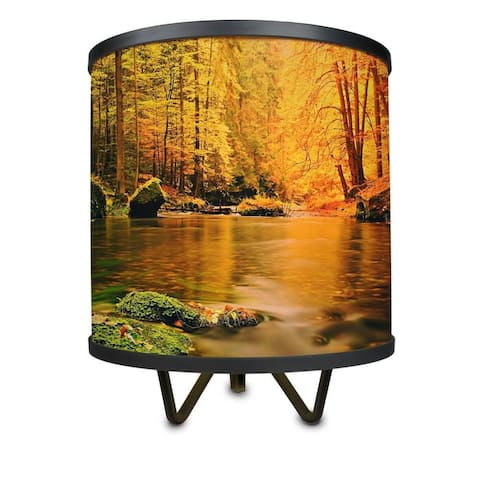 Woodlands in Autumn More Than a Lamp, Framed Art Now Comes Down From the Wall