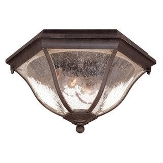 Acclaim Lighting Flushmount Collection Ceiling-Mount 2-Light Outdoor Black Coral Light Fixture
