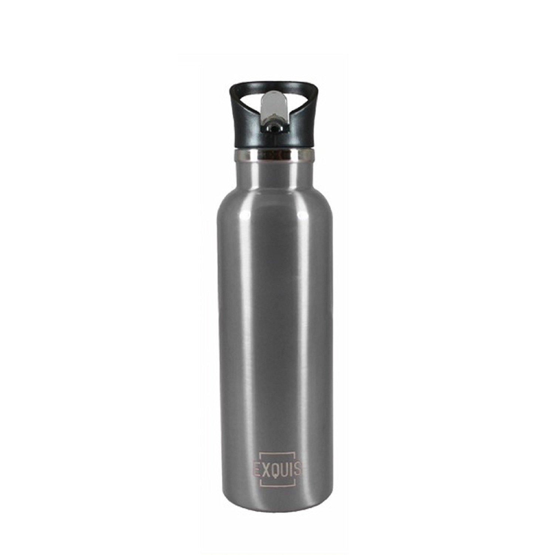 Stainless Steel Bottle w/ Straw - 17oz (1-piece, Pink)