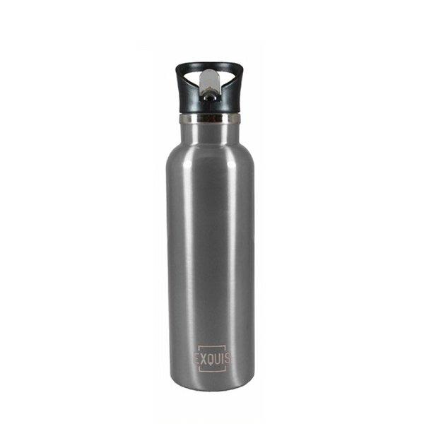 Stainless Steel Bottle w/ Straw - 17oz