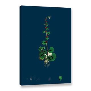 Bridgeman Circaea Alpina, Gallery Wrapped Canvas