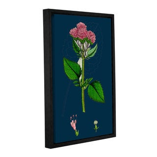 Bridgeman Small Flowered Melilot, Gallery Wrapped Floater-framed Canvas