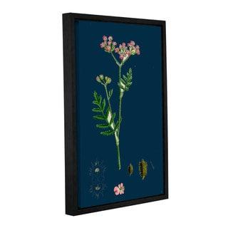 Bridgeman Nodding Melic Grass, Gallery Wrapped Floater-framed Canvas