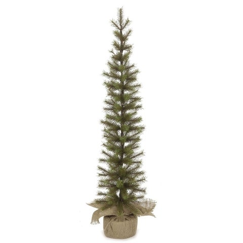 Needle Pine Pencil Tree - 37""