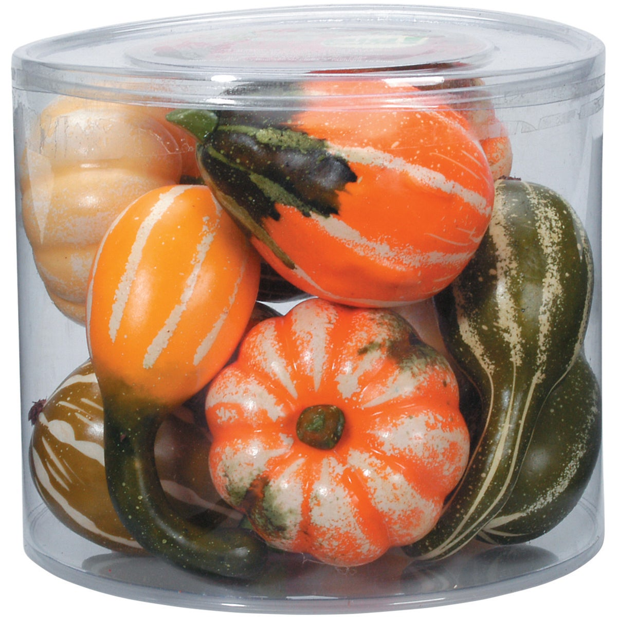 DARICE Mixed Gourds 12/Pkg (12/pkg), Multi (Plastic)