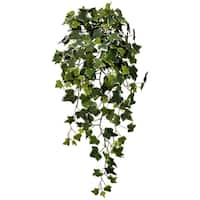 """English Ivy Hanging Bush X232 33"""""""