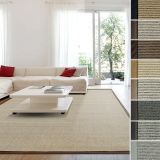 Soft Synthetic Sisal With Beautiful Border Area Rug in Brown