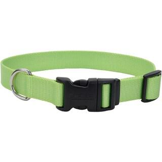"Adjustable Nylon 3/4"" Dog Collar W/Tuff Buckle"