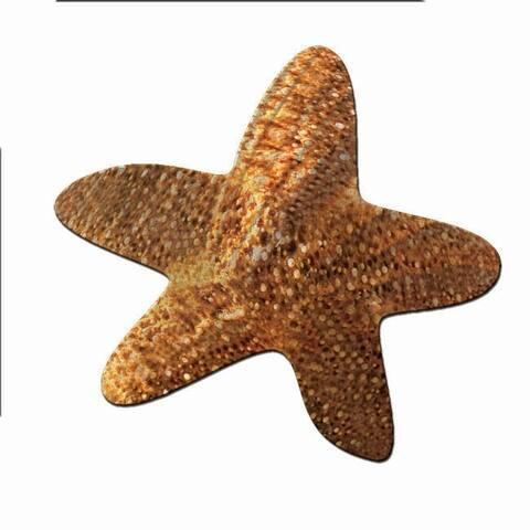 Metal Wall Art Star Fish Ash Carl