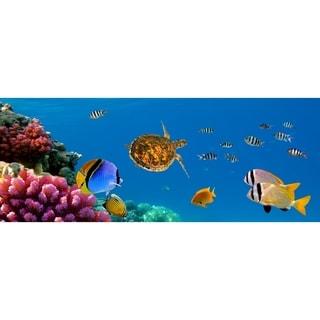 "Cortesi Home Sea of Life Tempered Glass Wall Art, 16"" x 48"""
