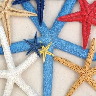 "Cortesi Home Starfish Wishes Tempered Glass Wall Art, 12"" x 12"" (Set of 2)"