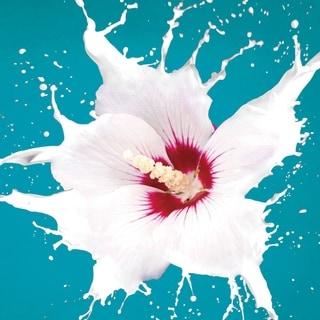 "Cortesi Home Flower Burst Tempered Glass Wall Art, 24"" x 24"""