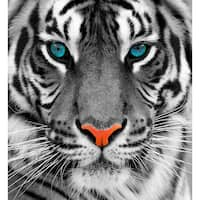 """Cortesi Home Thrill of the Tiger Tempered Glass Wall Art, 24"""" x 24"""""""