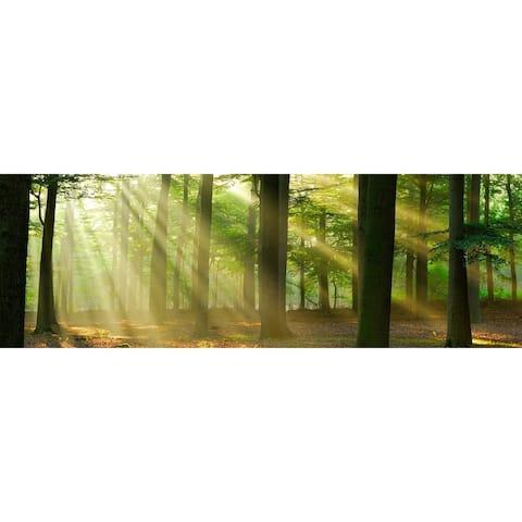 "Cortesi Home Rays of Light Tempered Glass Wall Art, 16"" x 48"""