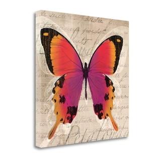 Butterflies III By Tandi Venter,  Gallery Wrap Canvas