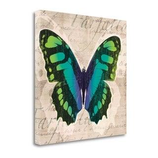 'Butterflies II' by Tandi Venter Gallery Wrap Canvas Art