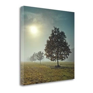 Its A New Day By Assaf Frank,  Gallery Wrap Canvas