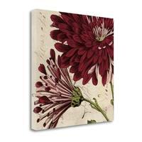 Joyful Bloom II By Sabine Berg,  Gallery Wrap Canvas