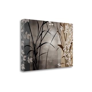 Silver Whispers II By Edward Aparicio,  Gallery Wrap Canvas