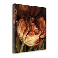 Color Harmony II By Linda Thompson,  Gallery Wrap Canvas