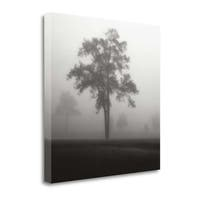 Fog Tree Study I By Jamie Cook,  Gallery Wrap Canvas