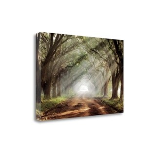 Evergreen Plantation By Mike Jones, Gallery Wrap Canvas