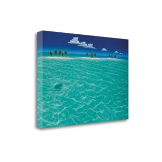 Turtle Crossing By Dan Mackin, Gallery Wrap Canvas