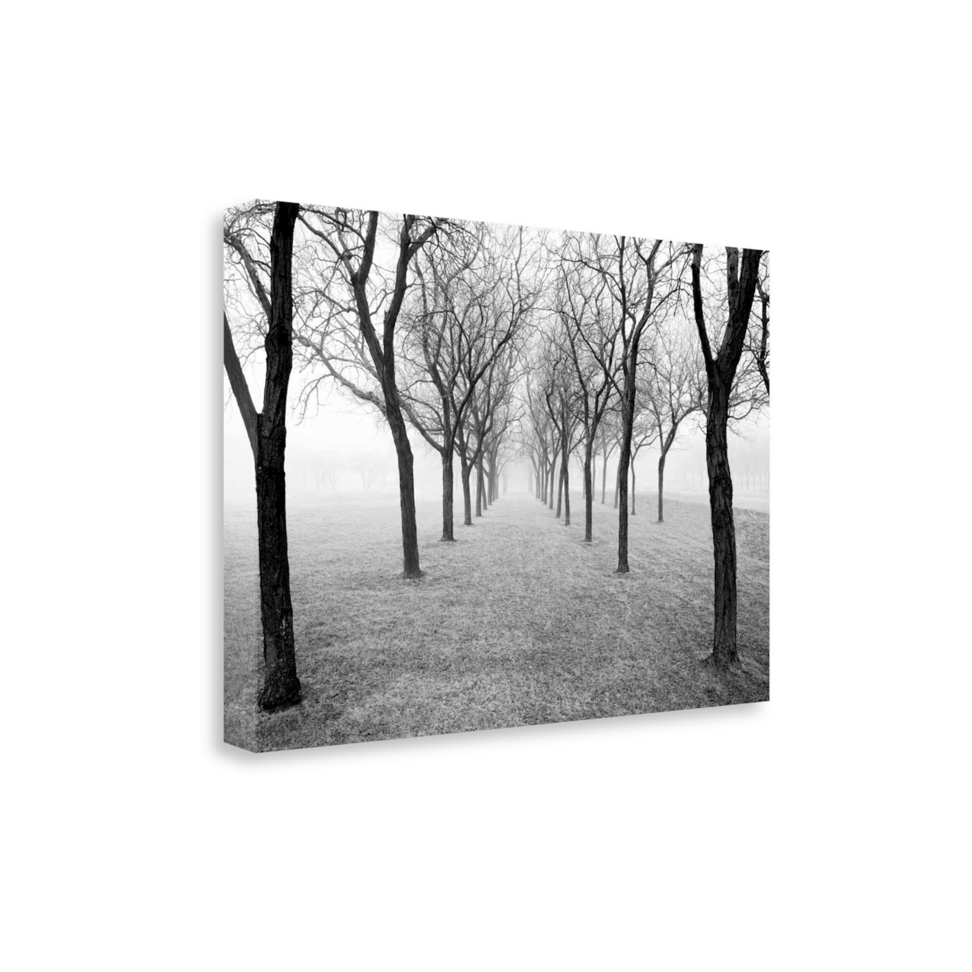 Details about tunnel of trees by monte nagler gallery wrap canvas