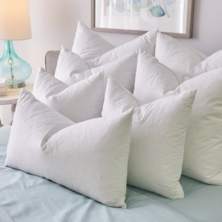 1221 Bedding Feather Pillow Inserts (Set of 2) - White