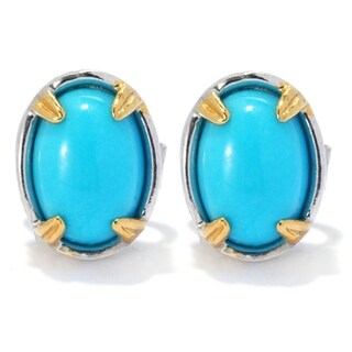 Michael Valitutti Palladium Silver Oval Sleeping Beauty Turquoise Stud Earrings