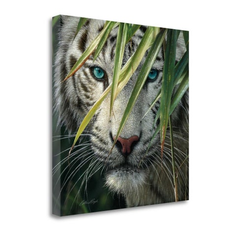 Watching And Waiting By Colin Bogle, Gallery Wrap Canvas