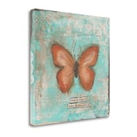 Butterfly III By Cassandra Cushman,  Gallery Wrap Canvas