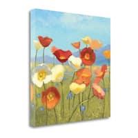 Springtime Meadow II By Shirley Novak,  Gallery Wrap Canvas