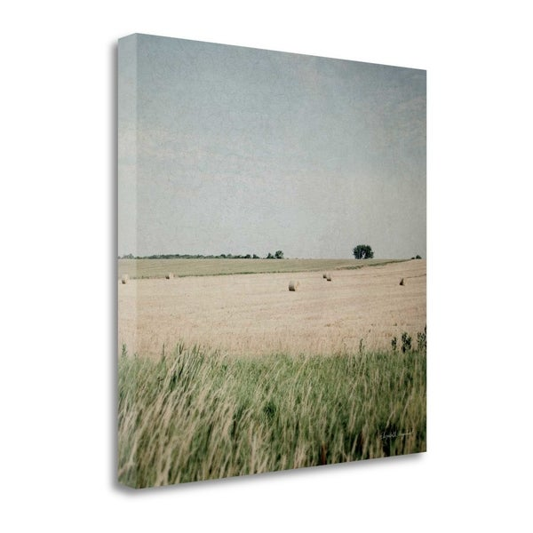 Neutral Country II Crop By Elizabeth Urquhart, Gallery Wrap Canvas