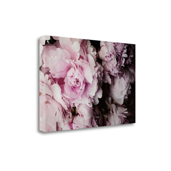 Peonies Galore I By Elizabeth Urquhart, Gallery Wrap Canvas