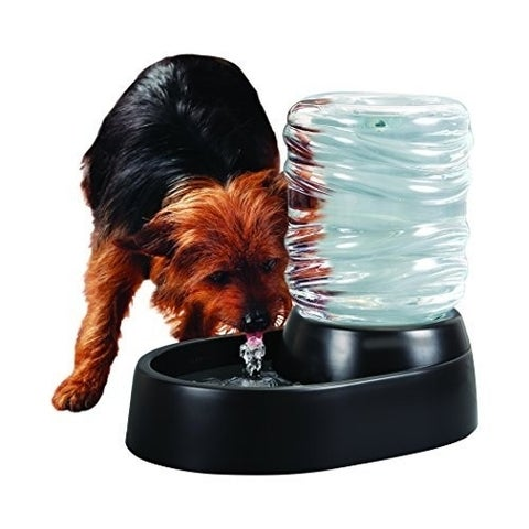 Dog & Cat Water Fountain - 62 Oz Automatic Pet Fountain - Dog Water Dispenser Black