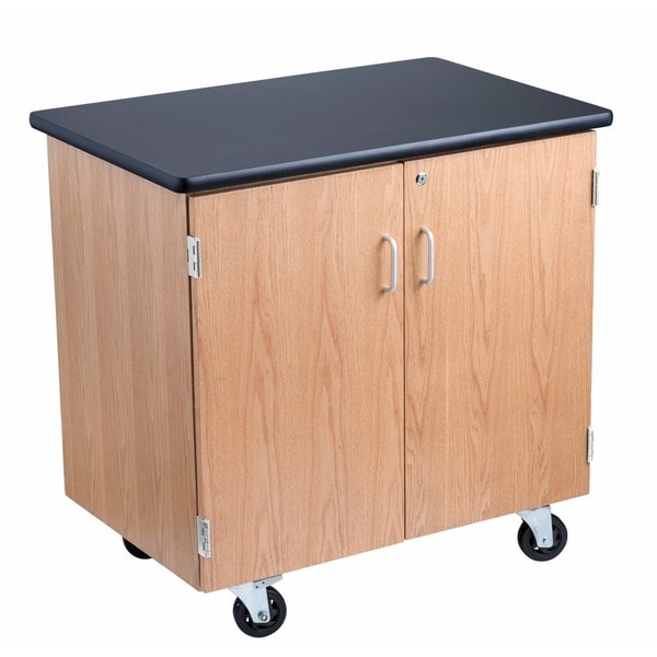 Science Lab Storage Cabinet 24 X 36 Free Shipping Today 18218494