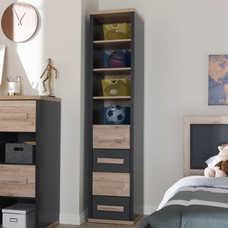 Contemporary Grey and Brown 4-Drawer Storage Cabinet by Baxton Studio