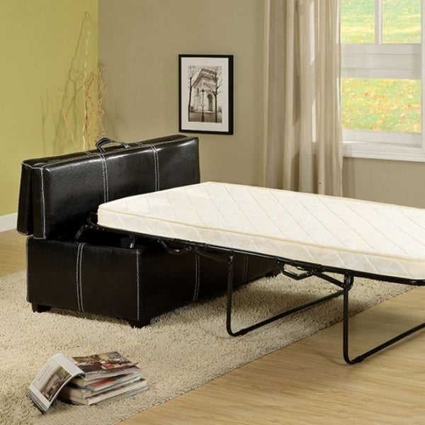 Shop Appoline Ottoman Pull Out Bed Contemporary Style
