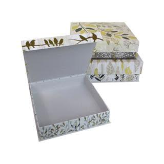 Molly & Rex Sq Flap Box Botanical S/3