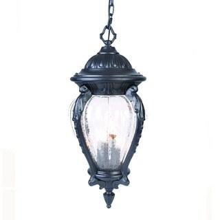 Acclaim Lighting Nottingham Collection Hanging Lantern 4-Light Outdoor Matte Black Light Fixture
